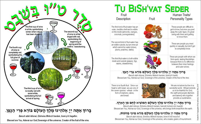 The Fruits and The Wine