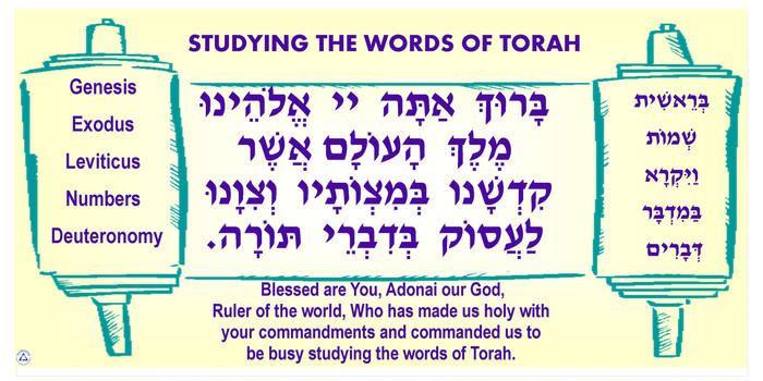 Study Torah Banner