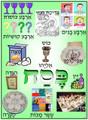 Pesach - Pesach Symbols poster (P-9)