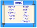Bible - Shemot Poster (P-2)