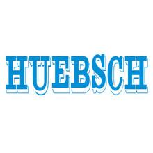 > GENERIC BELT 280307 - Huebsch