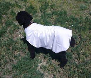 Heat Reflective Cooling Dog Jacket