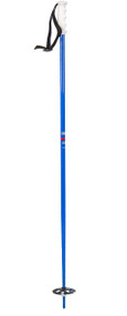 Faction Le Baton ski poles