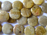 Fossilized Coral Agate Round Tabular Beads 20mm (GS1190)