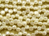 Ivory Round Tabular Pearl Beads 6mm (PRL10)