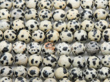 Dalmatian Jasper Round Gemstone Beads 8mm (GS610)