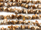 "Picture Jasper Chip Gemstone Beads - 30"" strand (GS109)"