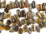 Genuine Amber Petal Beads 24mm (AB19)