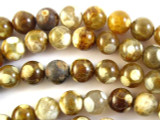 Tiger Fire Agate Round Gemstone Beads 10mm (GS2740)