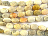 Fossilized Coral Agate Oval Tabular Gemstone Beads 12mm (GS2781)