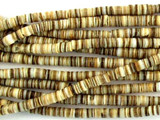 Voluta Shell Heishi Beads 2mm - 2 foot strand (SH486)