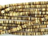 Voluta Shell Heishi Beads 2mm - 2 foot strand (SH486)