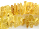 Copal Amber Nugget Beads 18-27mm (AB43)