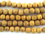 Raktu Seed Prayer Beads Mala - Nepal 8mm (NP485)