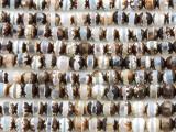 Tibetan Agate Round Gemstone Beads 6mm (GS3148)