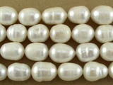 Ivory Irregular Oval Pearl Beads 12mm (PRL137)