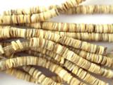 Voluta Shell Heishi Disc Beads 5-6mm - 2 foot strand (SH508)