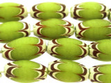 Lime Green Ellipsoid w/Feathers Glass Beads 17-21mm (JV1163)