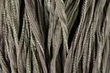 "Warm Gray Hand Stitched Silk Fairy Ribbon 42"" (SK1020)"