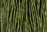 "Medium Green Hand Stitched Silk Cord 42"" (SK35)"