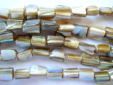 Dyed Beige Shell Beads 5-10mm (SH405)
