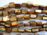 Dyed Brown Shell Beads 5-10mm (SH403)