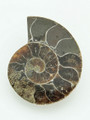Ammonite Pendant 33mm (AM378)