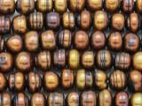 Bronze Irregular Rondelle Pearl Beads 11mm - Large Hole (PRL164)