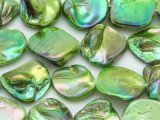 Lime Metallic Green Blister Shell Beads 14-22mm (SH516)