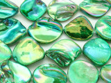 Emerald Green Metallic Blister Shells 14-22mm (SH517)