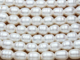 Ivory Irregular Oval Pearl Beads 10mm - Large Hole (PRL170)