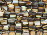 Bronze Irregular Shell Beads 5-10mm (SH525)
