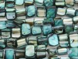 Teal Irregular Shell Beads 5-10mm (SH526)