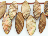 Bronze Leaf/Petal Shell Beads 45-50mm (SH528)
