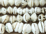Old Shell Beads - Mauritania (RF829)