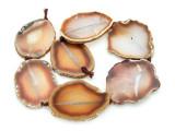 Brown Agate Slab Gemstone Beads 52-59mm (AS918)