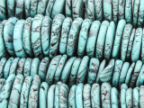 Turquoise Magnesite Graduated Irregular Disc Gemstone Beads 9-23mm (GS4209)