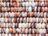 Spiny Oyster Shell Rondelle Beads 8mm (SH557)