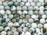 Tree Agate Faceted Round Gemstone Beads 8mm (GS4286)