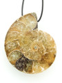 Ammonite Pendant 38mm (AM466)
