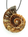 Ammonite Pendant 38mm (AM468)