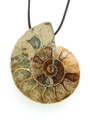 Ammonite Pendant 37mm (AM469)