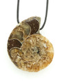 Ammonite Pendant 30mm (AM471)