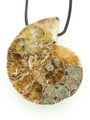 Ammonite Pendant 29mm (AM486)