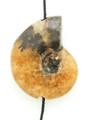 Whole Ammonite Pendant 25mm (AM496)