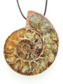 Ammonite Pendant 40mm (AM510)