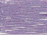 Purple AB Glass Seed Beads - 11/0 (SB162)