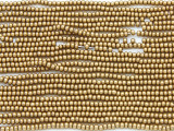 Gold Brass Metallic Glass Seed Beads - 11/0 (SB166)