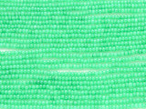 Celadon Green Glass Seed Beads - 10/0 (SB182)