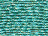 Turquoise Gold Glass Seed Beads - 10/0 (SB199)